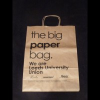 Printed Twisted Handle Paper Bags